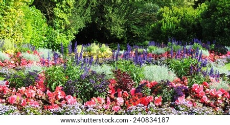 Flowerbed in a Beautiful Garden Background - stock photo