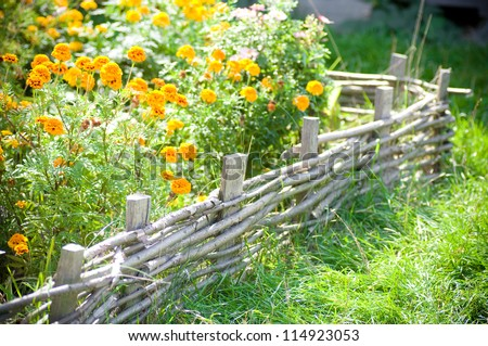 Flowerbed to garden with flowers - stock photo