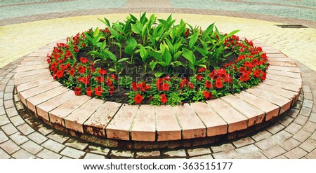 Flowerbed With Flowers - stock photo