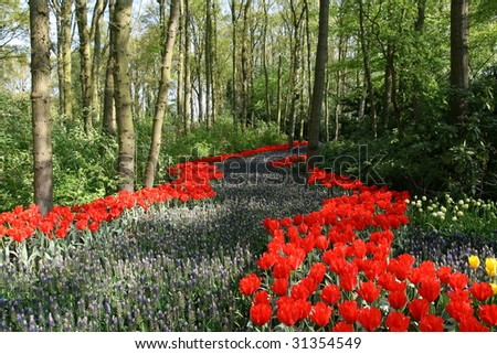 Flowered Path In Woods - stock photo