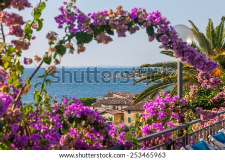 Flowering tree against a deep blue sky, Fantastic vacation. Garda. Italy - stock photo