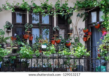 Flowerpots and house plants on the balcony - stock photo