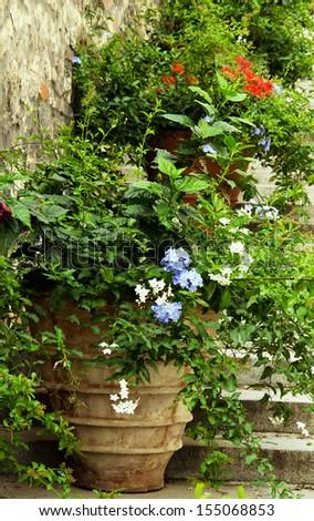 Flowerpots at Royal Gardens from Prague,Czech Republic. - stock photo