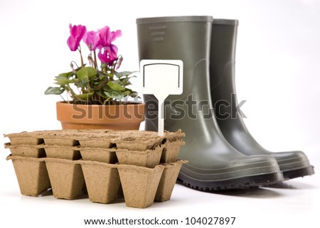 Flowers and garden tools - stock photo