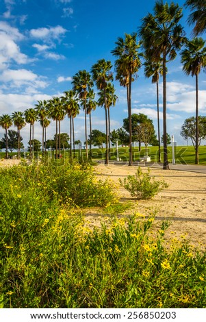 Flowers and palm trees at Shoreline Aquatic Park, in Long Beach, California. - stock photo