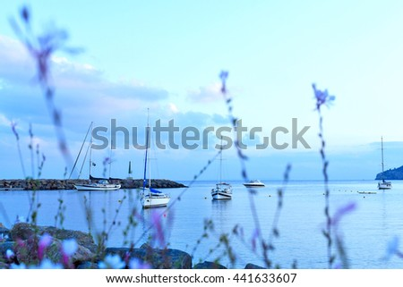Flowers and selective focus to the sea with anchored boats. - stock photo
