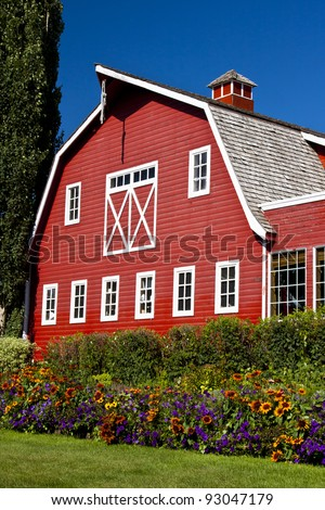 Flowers are lined up in front of a bright red barn - stock photo