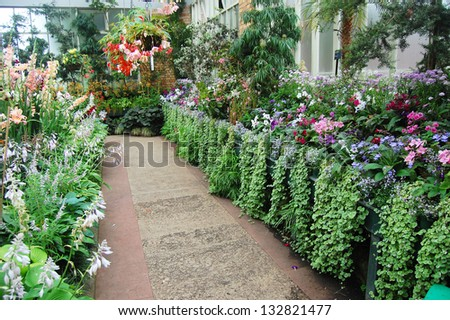 Flowers at greenhouse - stock photo