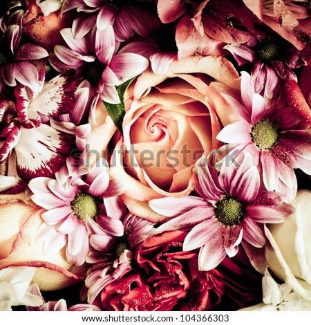 Flowers closeup - stock photo