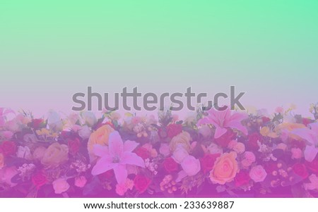 Flowers gradient background - stock photo