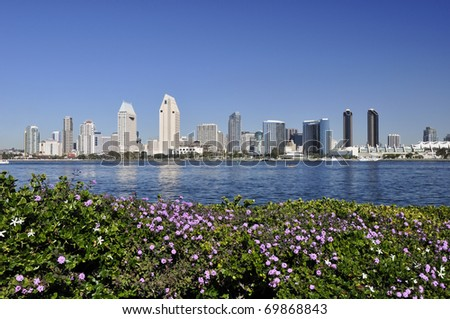 Flowers grow in the foreground on the island of Coronado with the San Diego skyline visible across the bay. - stock photo