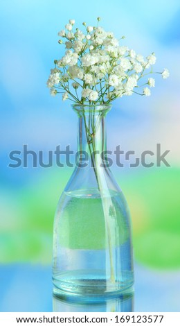 Flowers in bottle on natural background - stock photo