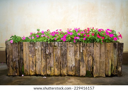 flowers in wooden pots  - stock photo