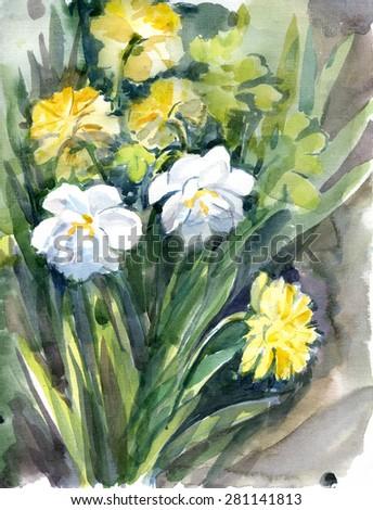 Flowers nature, botany - stock photo