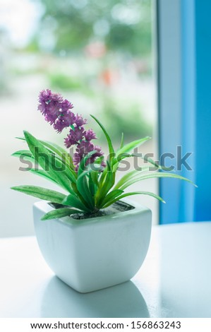 Flowers near a window in bright day - stock photo