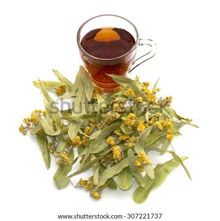 flowers of a linden and transparent mug of lime tea - stock photo