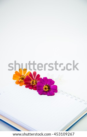 Flowers on a white background Book. - stock photo