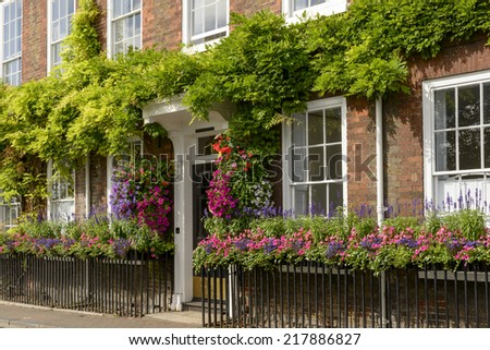 flowers on bricks facade, Henley on Thames,   blossoming flowers and greenery on old house brick facade, shot in touristic village on river Thames  - stock photo