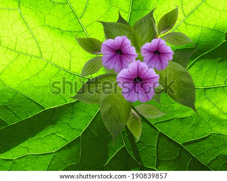 flowers on green floral background - stock photo
