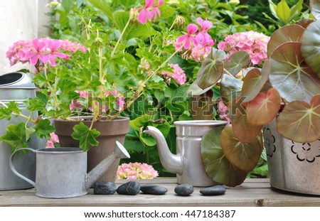 flowers pots, watering cans on wooden table  in garden  - stock photo