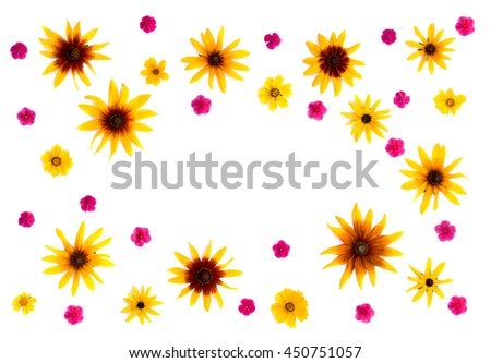 Flowers: Rudbeckia (Rudbeckia hirta, coneflowers and black-eyed-susans), Coreopsis lanceolata (calliopsis, tickseed) and Phlox paniculata on a white background with space for text. Flat lay - stock photo