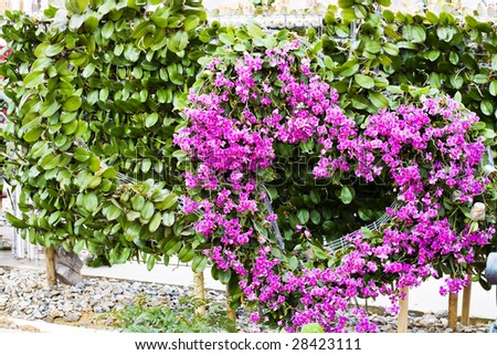 flowers shaped as a heart - stock photo