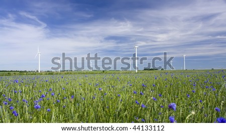 Flowery meadow with row of wind turbines in distance under blue sky with clouds. - stock photo