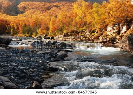 Flowing river in autumn , Abisko National park in Sweden - stock photo