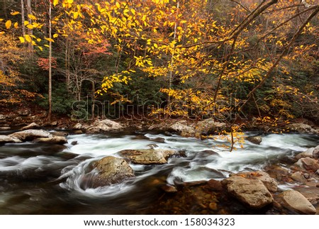 flowing stream with autumn colors, the great smoky mountains national park - stock photo