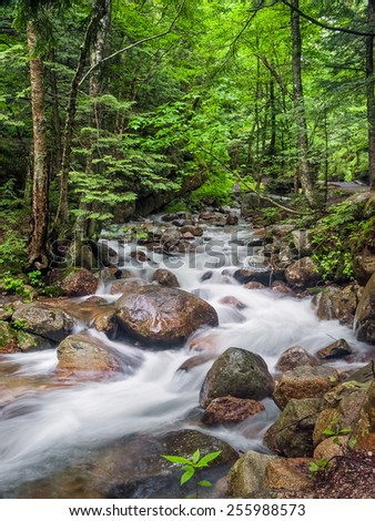 Flume Brook cascades over granite boulders through the forest of New Hampshire's Franconia Notch State Park. - stock photo