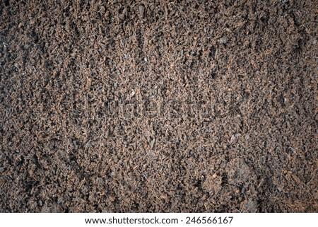 Flush Dirt Background with Nobody - stock photo