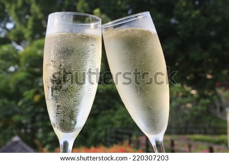 Flutes of champagne with green tree background - stock photo