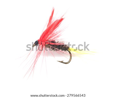 fly for fishing on white background - stock photo