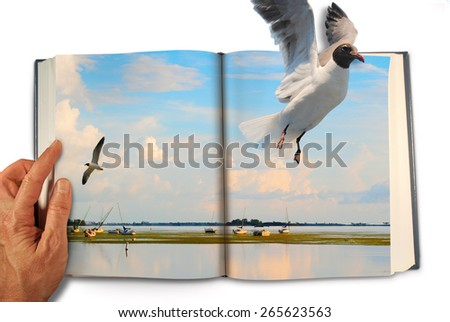 Flying bird escaping the page from a magic book just as we escape in the joy of reading with plenty of text space. - stock photo