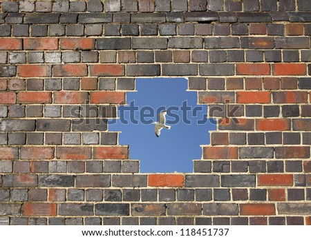 Flying bird through a hole in a brick wall background - stock photo