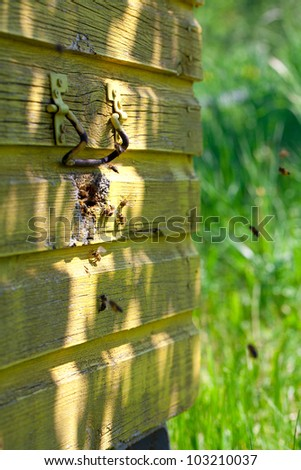 flying honey bees returning to their honeycomb - stock photo
