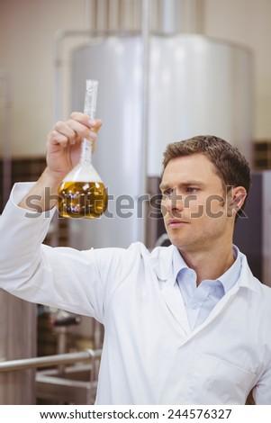 Focused scientist looking beaker with beer in the factory - stock photo