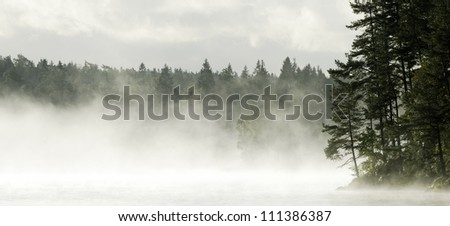 Fog and a lake, Sweden - stock photo