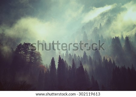 Fog and snow on mountain. Landscape in vintage style - stock photo