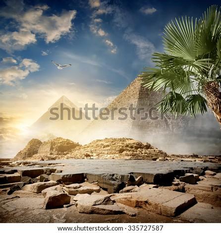 Fog around pyramids in desert at sunrise - stock photo
