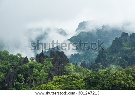 Fog covers distant trees on a limestone mountain side, Laos - stock photo