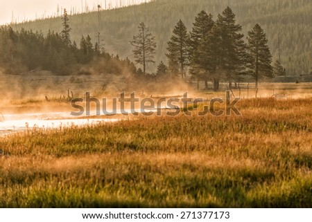 fog in golden sunrise in Yellowstone river - stock photo