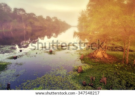 fog of canal Angkor Wat, part of Khmer temple complex, Asia. Siem Reap, Cambodia. Ancient Khmer architecture in jungle. - stock photo