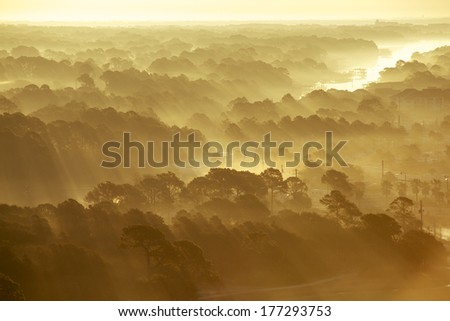 Fog Over Trees on Golf Course - stock photo
