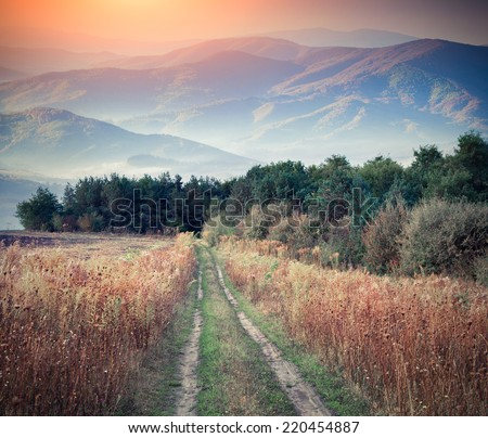 Foggy autumn landscape in the mountains. Retro style. - stock photo
