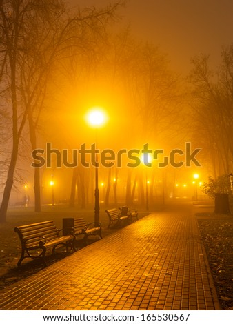 foggy evening in the park - stock photo