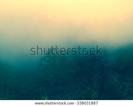Foggy Forest Background with autumn filtered colors Ideal as a background for quotes or inspirational typographic tex. - stock photo