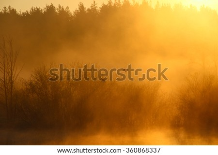 Foggy landscape: early morning on the river in the spring, the silhouette of wild ducks flies over the water. Fog. Sun. - stock photo