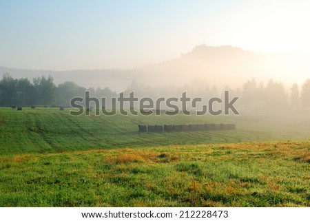 Foggy morning grassland landscape with trees and hill in the distance - stock photo