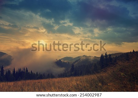 Foggy morning shiny vintage summer landscape with mist, golden meadow and sun shining - stock photo